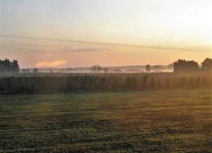 Pławna lipiec 2011 106
