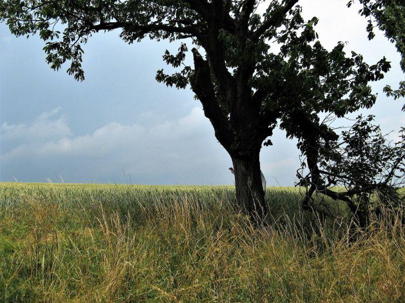 ,wiosna 2012,ferie,adam 050