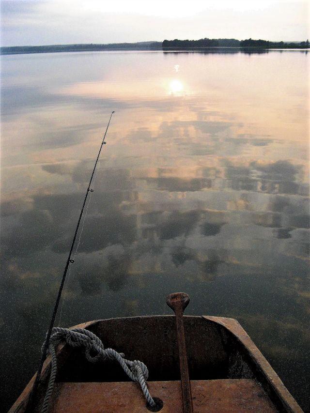 Przymuszewo 2011 028
