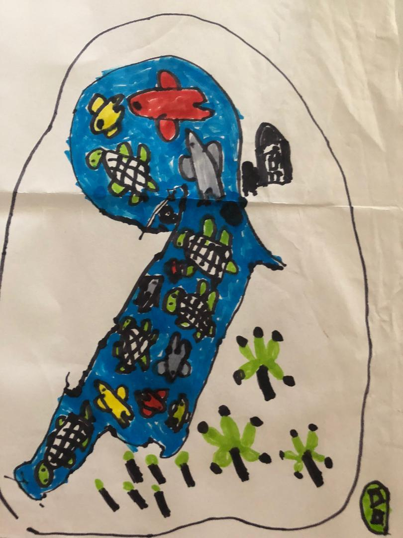 thumbnailKosma żółwie