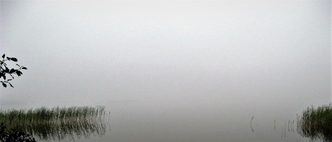 Przymuszewo 2011 132