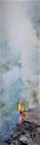 ,wiosna 2012,ferie,adam 121