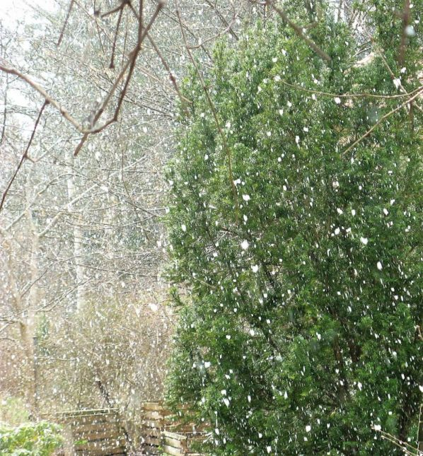śnieg 7 kwiecień